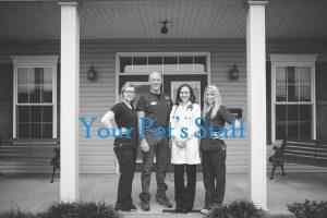 Kentucky Veterinarian Staff in Danville