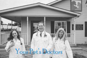 Your Pet Doctors