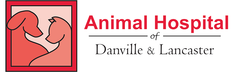 Pet Grooming in Danville KY Lancaster