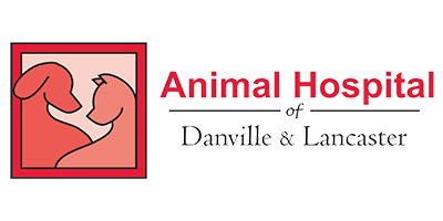 Animal Hospital of Lancaster KY - Vet Office