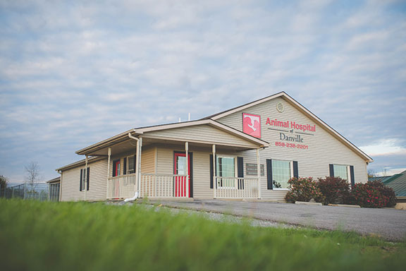 Animal Hospital of Danville KY - Vet Office