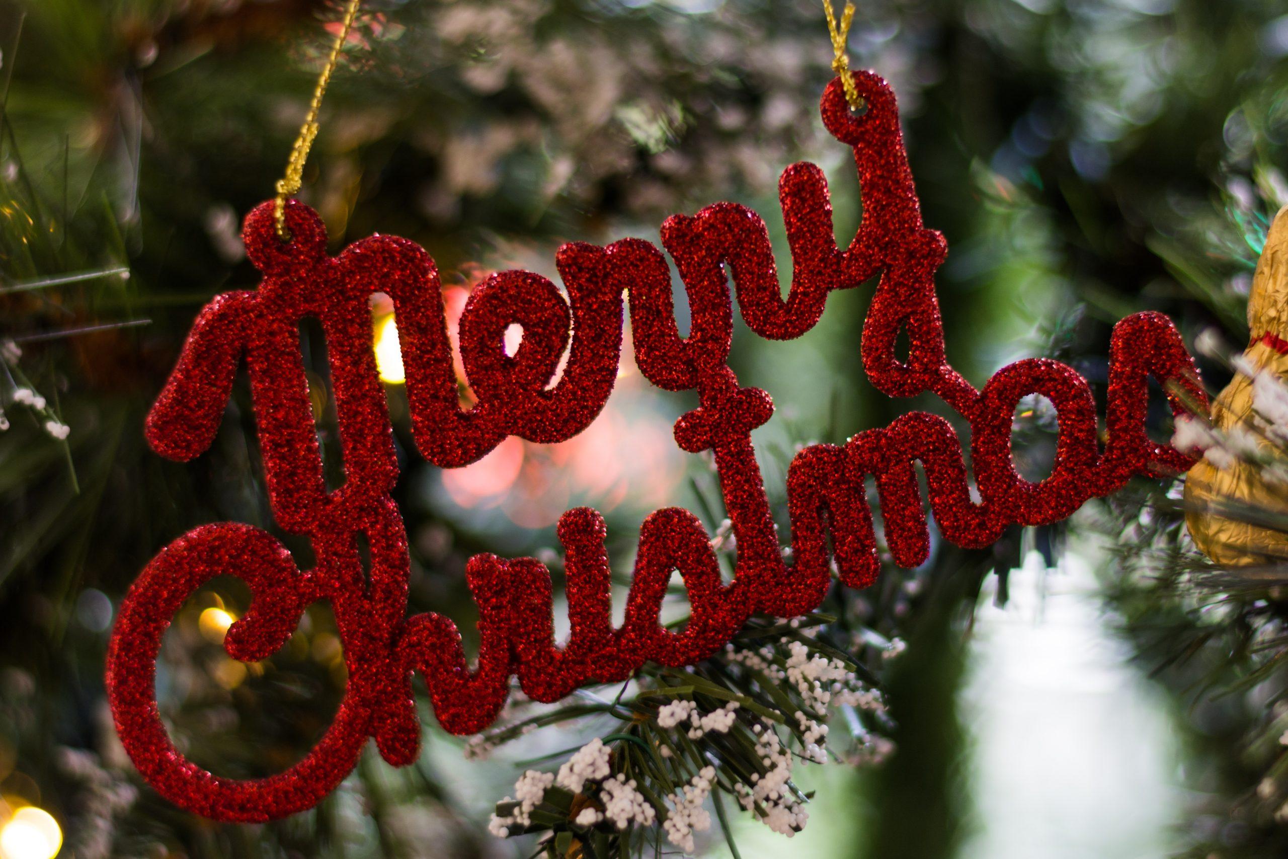 Santa Paws on Saturday!